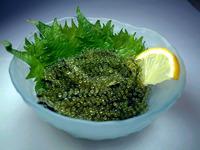 沖縄の海ブドウ