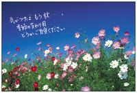 10月のキャンペーン☆