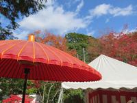 秋の空と赤い傘 (十万不動明王 五大堂同聚院)