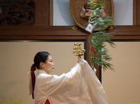 揺れる笹の葉に祈る (京都戎神社)