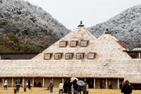 雪化粧の芝の屋根 (近江八幡・たねやラコリーナ)