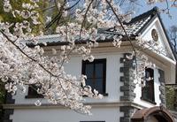 春の陽は暖かく (近江八幡市安土・近江風土記の丘)