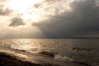 光る淡い海 (彦根・琵琶湖岸)