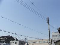 京都市内は雲ひとつない良いお天気!