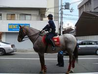 平安騎馬隊出現!!!!