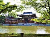 5月2日(火) 京都さんぽのお知らせ