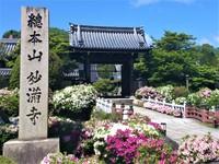 「 らくたび 」 4月~6月 京都さんぽのご案内