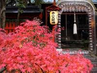 11月28日 京都さんぽのお知らせ