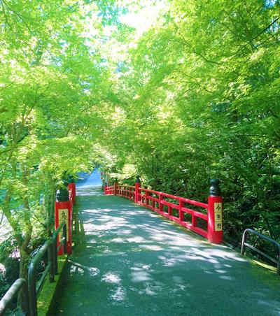 今熊野観音寺・鳥居橋