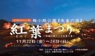 梅小路公園 紅葉まつり 11/22~11/24