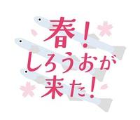 春!しろうおが来た! 2018年3月15日(木)~4月17日(火)