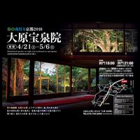 「春の夜灯り 京都2018」 2018年4月21日(土)~5月6日(日)