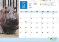 京都市動物園来年のカレンダー販売中