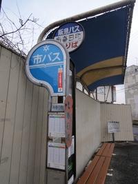 4/11 西行桜と洛西の春日大社・大原野神社へ