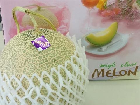網野:メロン