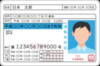 運転免許の種類と条件