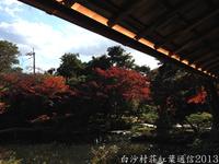 白沙村荘紅葉通信2013 Vol.18