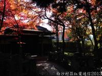 白沙村荘紅葉通信2013 Vol.21