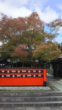車折神社さんの紅葉