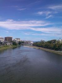 今日の鴨川(正面橋より)