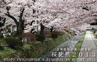 京都哲学の道 関雪桜 桜徒然2013 Final