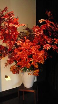 ナナカマドの紅葉。