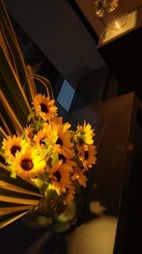ニューサイランと向日葵。 2012/07/08 12:34:38