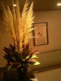 パンパスグラス 2011/08/11 13:53:43