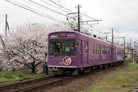 桜咲く季節をゆく (嵐電・龍安寺駅)