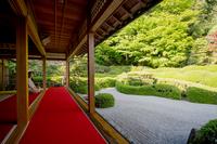 くつろぎの庭園 (滋賀・甲賀大池寺)