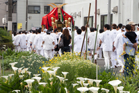 松尾の葵祭 (西大路・松尾大社還幸祭おかえり)