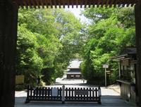 仏殿への道 (泉涌寺)