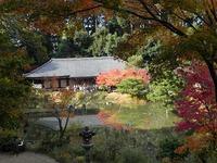 浄瑠璃寺から岩船寺へ  当尾の里を歩く!