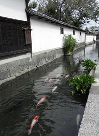 近江商人のふる里 五個荘探訪