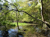 京都一周トレイル 比叡山~大文字山を歩く