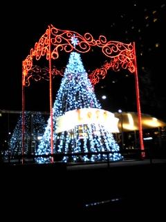 ZEST御池 クリスマスツリー