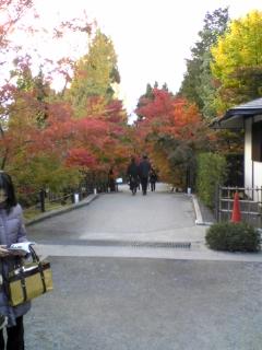 永観堂(3)