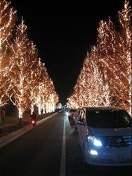 ロームのライトアップ!(3)