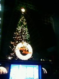京都駅ビルクリスマスツリー。