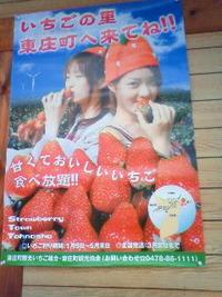 京都、四条、鴨川、等間隔。 2010/05/08 18:44:44