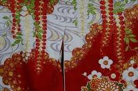 花の丸紋の振袖