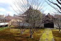 妙覚寺の法姿園