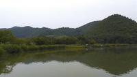 京都は今日は、曇天~広沢池
