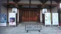 東寺(夜桜ライトアップ)