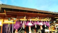 初詣で八坂神社に来ています。