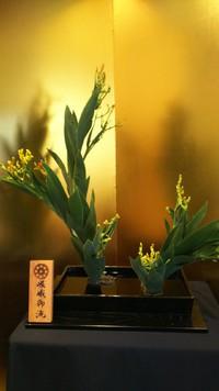 祇園祭の花  檜扇(ひおうぎ)
