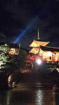 清水寺のライトアップに行ってきました。