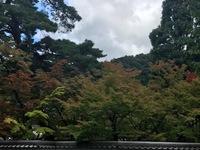 南禅寺あたりの紅葉