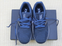 新品の靴でお散歩へ