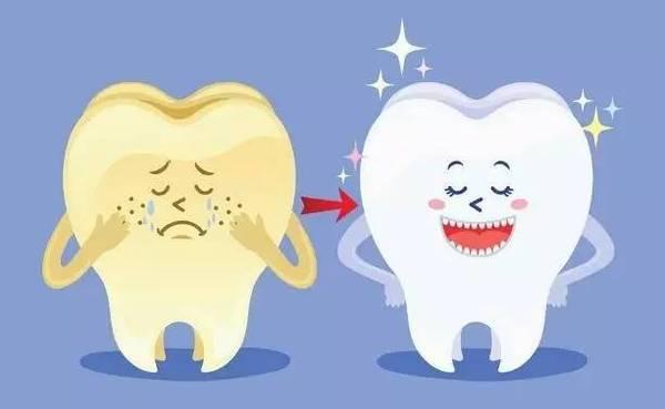 歯科治療器具